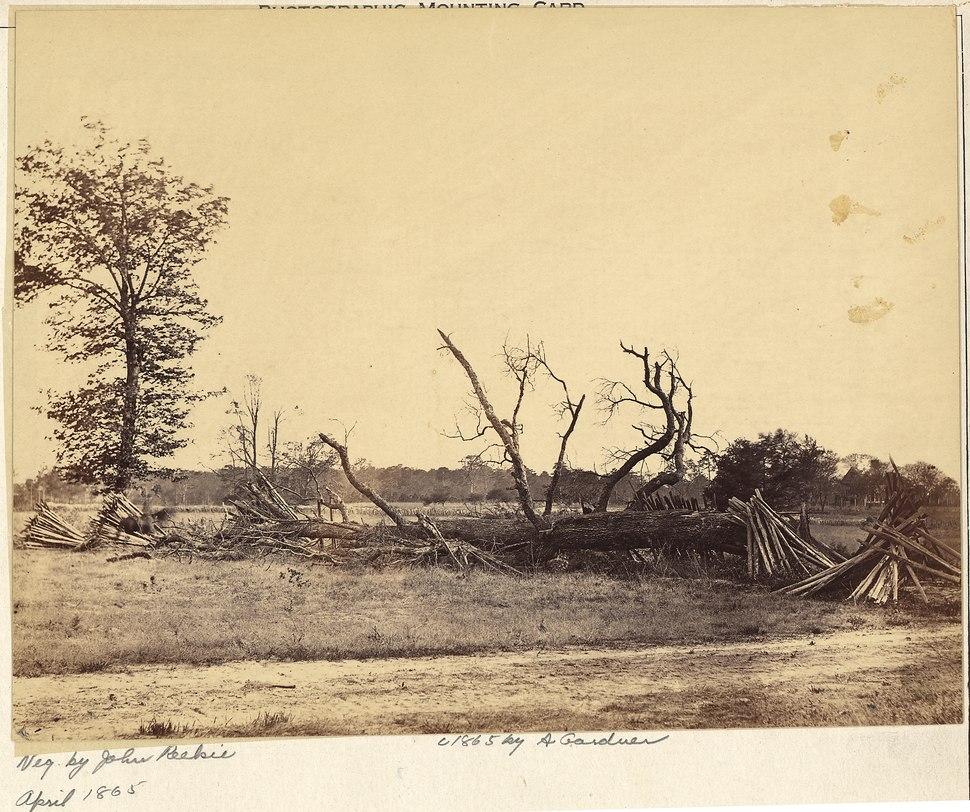 Virginia, Cold Harbor. Extreme line of Confederate Works - NARA - 533369