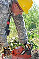 Virginia National Guard soldiers clear fallen trees 110828-A--503.jpg