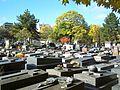 Vue 1 du cimetière de Belleville.JPG