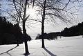 Würmtal im Winter.jpg