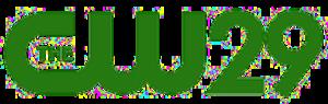 WVIR-TV - Image: WVIR DT3 (CW 29) logo