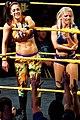 WWE NXT 2015-03-27 22-56-52 ILCE-6000 3460 DxO (17180754079).jpg