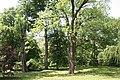 Wabcz park dworski 2012 05 23 fot K Lewandowski 0407.JPG