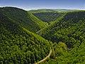 Winding road and landscape, Shippen, Pennsylvania, U.S.A.jpg