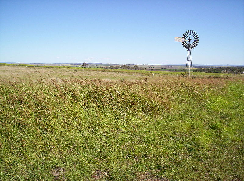 File:Windmill on the Darling Downs, Queensland.jpg