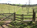 Winter orchard - geograph.org.uk - 1187328.jpg
