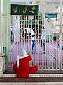 Woman at Gate of Mosque (No Ladies Allowed) - Hazratbal Shrine - Srinagar - Jammu & Kashmir - India (26770523561).jpg