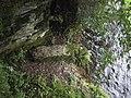 Worthyvale ogham stone.jpg