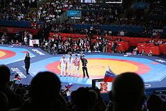 Wrestling at the 2012 Summer Olympics 2074.jpg