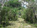 Xtobó, Yucatán (16).jpg