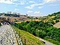 Yerevan Zoo 46.jpg
