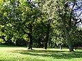 Zabłudów park dworski 8.JPG