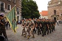 Zemessardze's parade at 20 anniversary 052