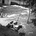 """""""Štirən"""" (vodnjak), korito in deža na vagi, Prapetno Brdo 1954.jpg"""