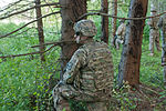 'Destined' Soldiers conduct fire team exercise 150711-A-GQ133-001.jpg