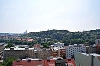 Červený kopec (Brno).jpg