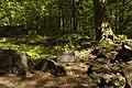 Ślęża -Starożytny Wał Kultowy - panoramio.jpg