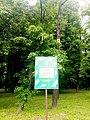 Інформаційна табличка. Парк-пам'ятка садово-паркового мистецтва «Нивки».jpg