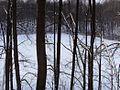 Большое Чернеевское озеро - panoramio.jpg