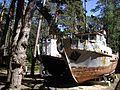 Бривдабас музейс - panoramio.jpg