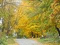Вінничина, Муровані Курилівці парк Жван 03.jpg