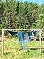 В Кенозерском заповеднике, просушка ткани с традиционной северной набивкой.jpg