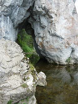 Дыроватый камень около воды.JPG