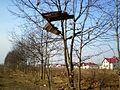 Зробленае месца адпачынку - panoramio.jpg