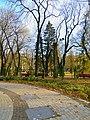 Маріїнський парк 11.jpg