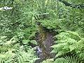 Олений ручей в Сокольниках.jpg