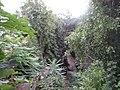 Природни споменик Миоценски спруд Ташмајдан 007.JPG