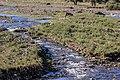 Река, Кедабек.jpg
