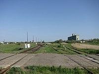 Станция Черкасская Южная горловина.JPG