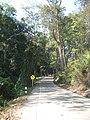 ทางไปบ้านห้วยเสือเฒ่า - panoramio - ----=UT=----.jpg