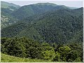 ხედი სალომეს მთიდან ^2 - panoramio.jpg