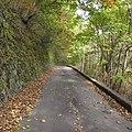 一ノ瀬林道-08 - panoramio.jpg
