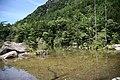明神池 - panoramio (1).jpg