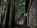 犬嶋神社の裏道(その1) - panoramio.jpg
