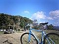 玖島城跡 - panoramio.jpg