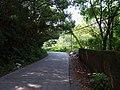 科蹄山路 - Keti Hill Road - 2014.08 - panoramio.jpg