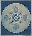 -Frustules of Diatoms- MET DP262066.jpg