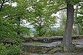 00 266 NP Sächsische Schweiz - Kuhstall (Ehemalige Burg Wildenstein).jpg