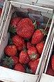 020180505 104656 Korb mit Erdbeeren.jpg