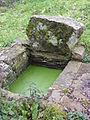 027 Plougastel Fontaine près ruisseau de Saint-Guénolé.JPG