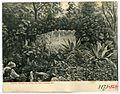 08289-Portland, Ore.-1906-Looking through the Grotto. City Park-Brück & Sohn Kunstverlag.jpg
