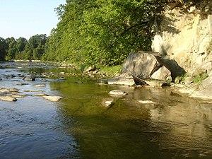 Osława - Image: 0slawa river 2007
