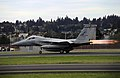 142d Fighter Wing - F-15 Eagle.jpg