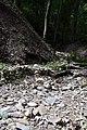 170818-04 trockengefallener Bachlauf oberhalb des Autals.jpg