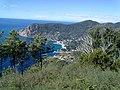 19018 Vernazza, Province of La Spezia, Italy - panoramio (20).jpg