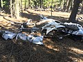 1947 Snell crash wreckage 07 - Fremont NF Oregon.jpg